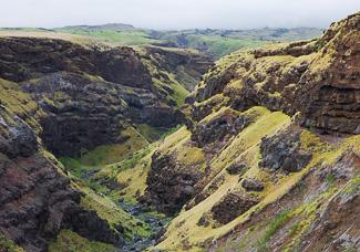 Canyon along the Hana Highway - Photo © Carl Amoth