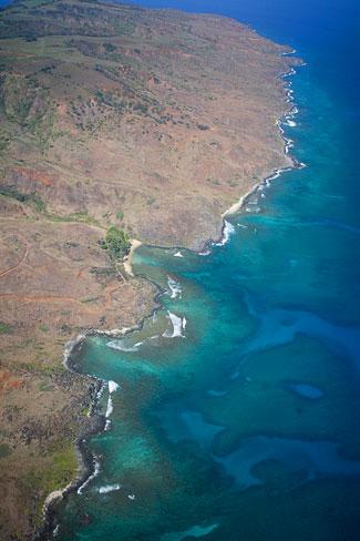 Reef on Molokai
