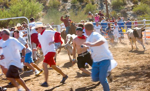 Running of the Bulls - Cave Creek, AZ