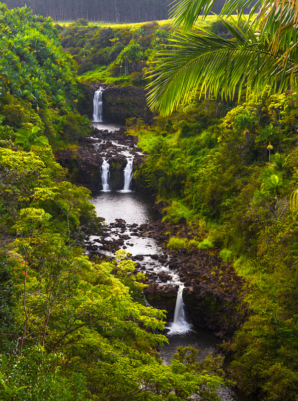 Umauma Falls, Big Island, Hawaii. © Carl Amoth