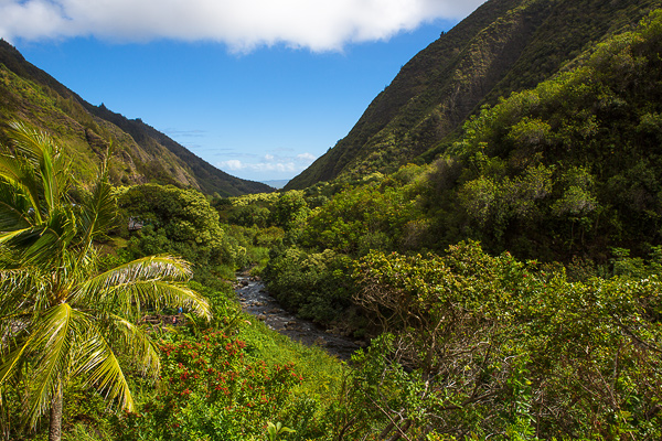 'Iao Valley, 'Iao State Park © Carl Amoth