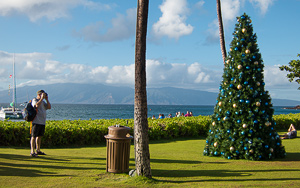 Create your own comment here... Kaanapali, Maui.