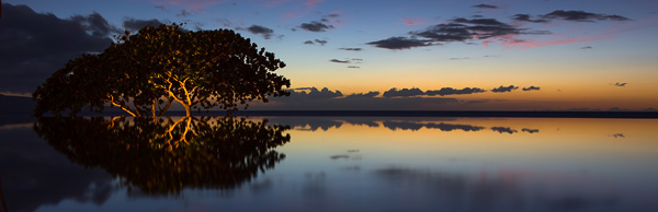 Reflections. The Infinity Pool at Wailea Beach Marriott Resort & Spa, Maui. © Carl Amoth